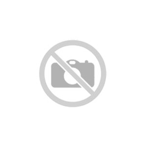 Schilderij Fish B - 60 x 90 cm (groen/blauw)