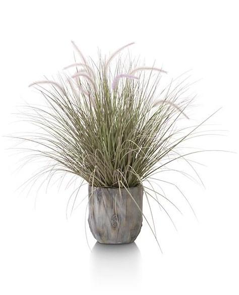 Grass Pennisetum - 86 cm