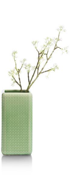 Vase Dots - Mint