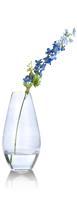 Delphinium spray - 77 cm