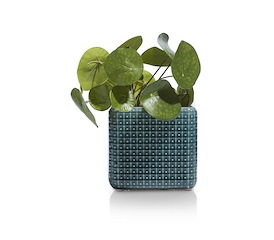 Pot Dots Large - blauw