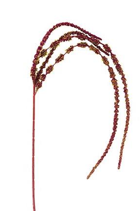 Amaranthus Spray - 110 Cm