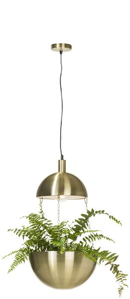 Bloom, Hanglamp 1-lamp