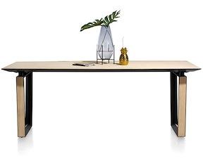 Darwin, Table 210 X 100 Cm